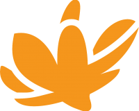 mymagnolia-logo-orange.png